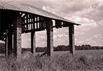 Słynna stodoła w Chmielach