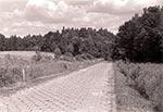 Droga wiodąca do jedynych obiektów, których nie wolno fotografować na Roztoczu Wschodnim/Południowym