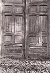 Drzwi na terenie kompleksu pałacowego Zamoyskich w Klemensowie