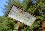 Stara klimatyczna tabliczka na skraju Parku Krajobrazowego Puszczy Solskiej, przy wjeździe od strony Olchowca w kierunku Borowca. Widoczne ślady po ćwiczeniach strzeleckich  ;)