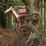 Liczne ptaki pożerają w sezonie lęgowym ogromne ilości szkodników - dlatego zwabiamy je zarówno dokarmianiem jak i doskonałymi warunkami lokalowymi na wiosnę ;-)