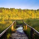 """""""Kobyle Jezioro"""" - rezerwat w okolicy Huty Złomy"""