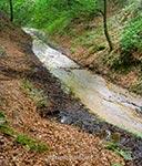 Źródła w okolicy Bliżowa - woda płynie na krótkim odcinku drogą, a później znika