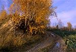 Grzęda Sokalska - okolice Ruszowa