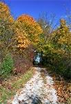 Droga do baszty widokowej w Krasnobrodzie