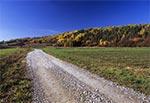 Roztocze Gorajskie - droga z Chłopkowa do Hoszni