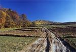 Droga biegnąca dnem doliny u stóp Góry Łysiec