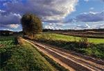 Droga na Wojdę od strony Kosobud
