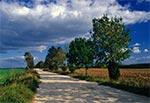 Droga z Łówczy w stronę Huty Złomy
