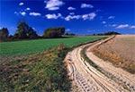Droga między Łazową a Brzezinami