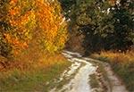 Droga z Udrycz do Zamościa