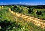 Pejzaż okolic Tereszpola - w oddali lasy RPN