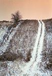 Roztocze Środkowe zimowym zmierzchem