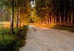 Droga do Gargamela o świcie - Rebizanty