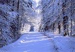 Trakt Florianiecki zimą