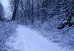 Droga z Polanki Horynieckiej w stronę Chmieli