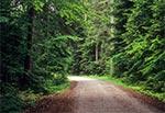 Trakt Florianiecki czyli droga ze Zwierzyńca, przez Floriankę do Górecka