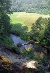 Rzeka Wieprz w Roztoczańskim Parku Narodowym