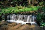 Najwyższy naturalny wodospad Roztocza - potok Jeleń