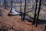 Rzeka Wieprz na odcinku między Guciowem a Obroczą