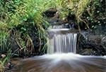 Niewielki wodospadzik na niewielkim potoku, w rejonie Chotylubia (Hrymaków)