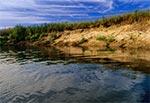 Rzeka Tanew w środkowym biegu