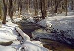 Zimowy potok Sopot koło Hamerni