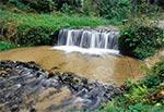Największy naturalny wodospad Roztocza - potok Jeleń