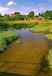 Potok Łosiniecki w Łosińcu