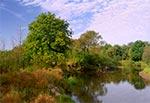 Rzeka Tanew w rejonie wsi Pisklaki dojrzałym latem - porą idealną aby tam zajrzeć
