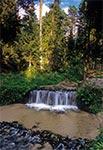 Największy wodospad Roztocza - na potoku Jeleń koło Suśca