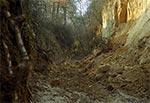 Erozja wąwozowa na żywo - okolice Kawęczyna