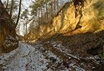 Zimowy wąwóz lessowy - okolice Kawęczyna