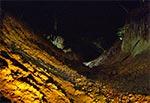 Wąwóz lessowy nocą - Las Cetnar