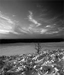 Krajobraz Roztocza w tonacji czarno białej