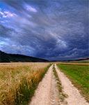 Droga polna u stóp góry Łysiec